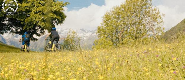 vidéo vit dans les Pyrénées