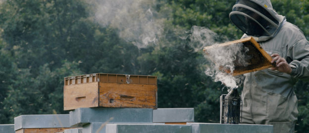 apiculteur en dordogne